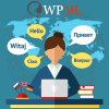 Multilingual SEO – WPML